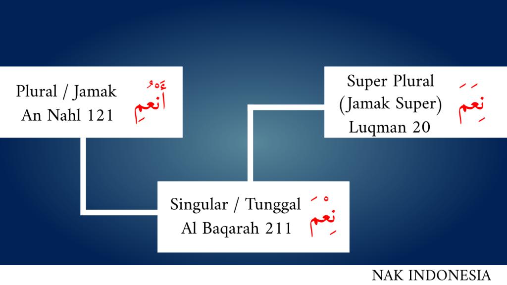 nikmat plural super plural